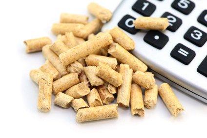 foerderung holzheizung pellets mit taschenrechner