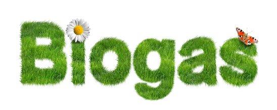 Biogas mit Wiese, Blumen und Schmetterling
