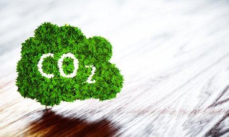 Grünes CO2 Icon auf Holztisch