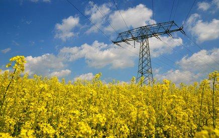 EEG Umlage: Strommast im Rapsfeld