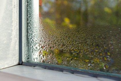 Fensterlüfter vonnöten, um Luftfeuchtigkeit zu regulieren
